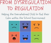 21-3348-SPR-From Dysregulation to Regulation - 2 Session